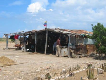 Cubagua - Schnorcheln Cubagua