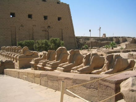 Der Tempel von Karnak - Amonstempel Karnak