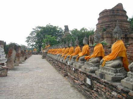 Thailand , Ayutthaya - Wat Phra Monkhon Bohpit