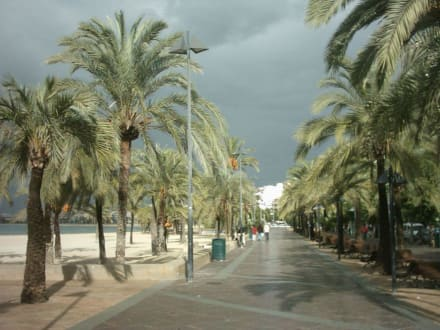 Strandpromenade von El Arenal - Strand El Arenal/S'Arenal
