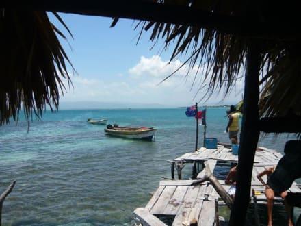 Ausblick von der Pelikan-Bar - Pelikan Bar