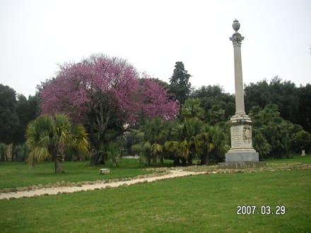 Kleiner Teil der Gartenanlage des Park Torlonia - Park und Villa Torlonia