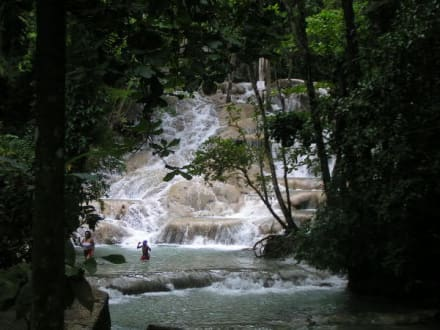 Dunn's River - Dunn's River Falls