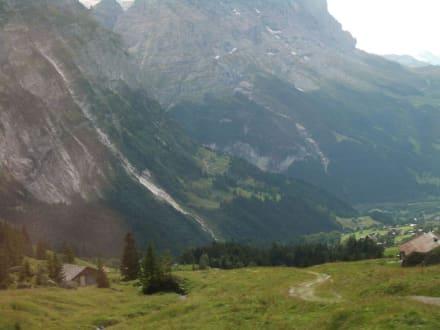 Blick auf Grindelwald - First