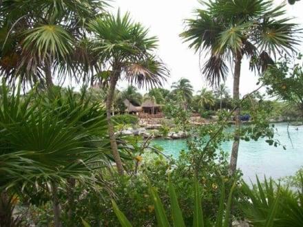 Naturreservat/Zoo - Xel-Ha Nationalpark