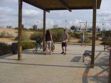 Rast Fahrradtour - Radweg Playa de Palma nach Palma