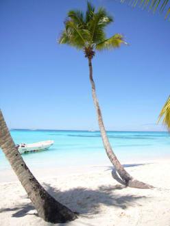 Karibikfeeling pur! - Isla Saona