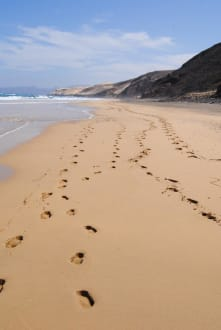 Wüste, Strand und Berge - Wandern TimeforNature Tarajalejo