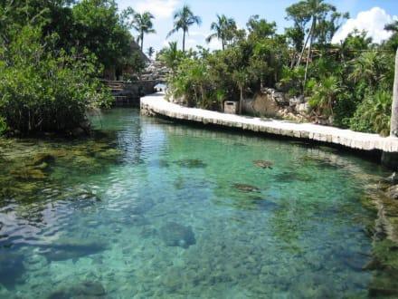 Lagune - Freizeitpark Xcaret
