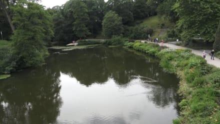 Alter Botanischer Garten - Tropengewächshaus Alter Botanischer Garten