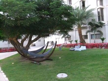 Gartenanlage - Hotel Oasis Dead Sea