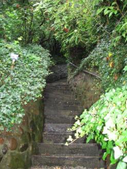 romantisches Treppenviertel Blankenese - Treppenviertel in Blankenese