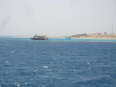 Auf dem Weg zum Tauchspot - Giftun / Mahmya Inseln