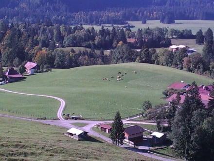 Aussicht vom Schanzen Turm - Heini Klopfer Skiflugschanze