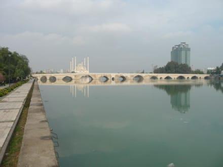 Adana Wetter