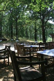 Taverne Sogambros - Taverne Sogambros