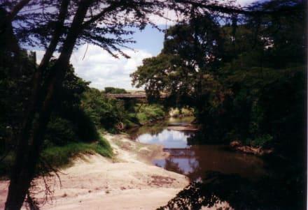 Camp - Flugtrip Masai Mara