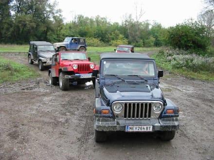 Gänse- nee Erpel-Marsch - Jeep Safari Klein-Pöchlarn