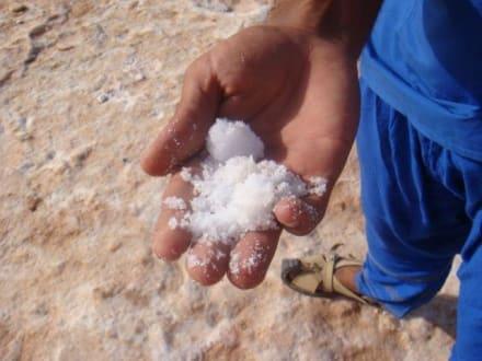 nene - kein schnee - SALZ - Salzsee