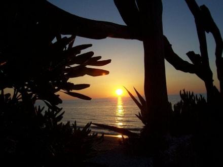 Mein schönster Sonnenuntergang - Strand Acharavi