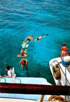 Schnorcheln - Giftun / Mahmya Inseln
