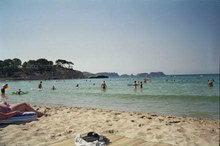 Strand von Paguera - Strand Paguera/Peguera