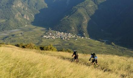 Biken im Trailparadies Vinschgau - Bikeschule vinschgauBIKE