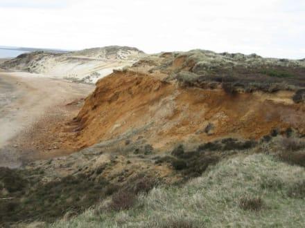 Morsum Kliff! - Naturschutzgebiet Morsum Kliff