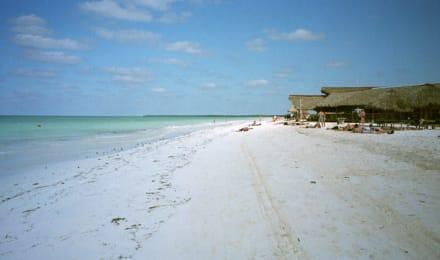 Ausflug - Strand Cayo Blanco
