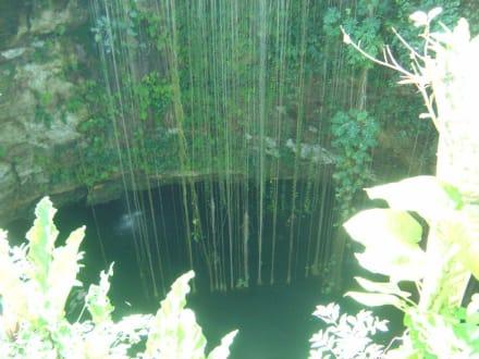 Cenote zum Baden in der Nähe von Chichen Itza - Cenoten