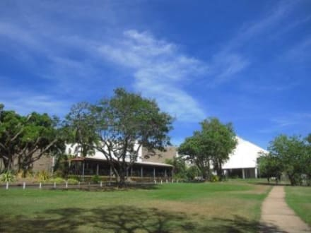 Museum - Museums & Art Galleries of the Northern Territory