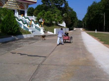 Arbeiter vorm Tempel - Weisser Buddha