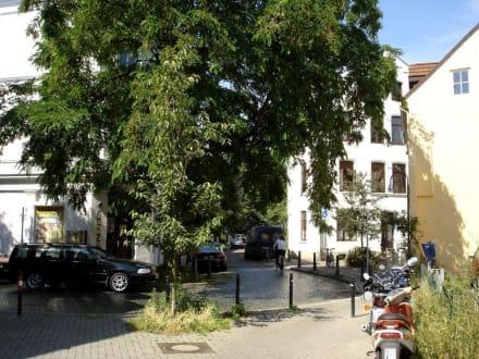 Das Steintor-Viertel - Ostertor-Viertel