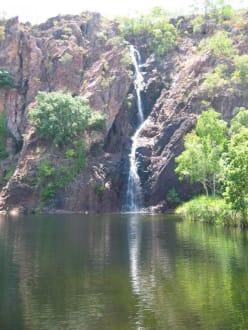 Florence Falls - Florence Falls