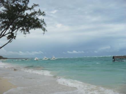 Hotelstrand - Hotel Vista Sol Punta Cana