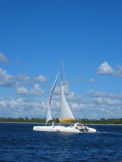 Katamaranfahrt - RH Tours Ausflüge Punta Cana