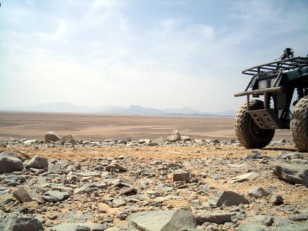 Quad-Wüstentour - Wüste