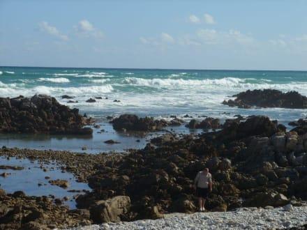 Schöne Küste - Kap Agulhas