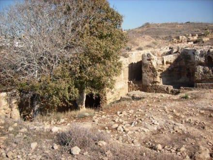 Höhlensystem nahe der Agiou Lamprianou - Fabrica - Höhlensystem
