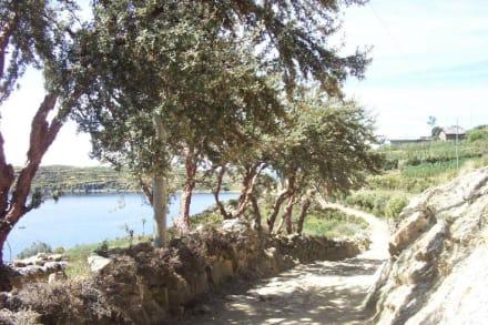 Wanderweg auf der Isla del Sol - Isla del Sol