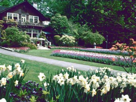 Blütenzeit im Stanley Park - Stanley Park