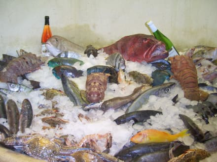 Fishhouse Hurghada - Essen & Trinken