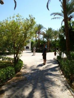 Gartenanlage - Sultan Gardens Resort