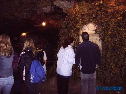 im Labyrinth/ Burgberg - Höhlen