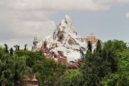 Mount Everest Bahn - Animal Kingdom