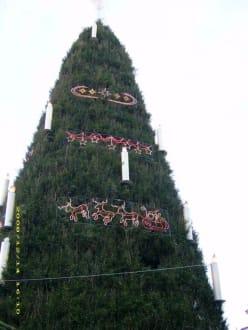 Der größte Weihnachtsbaum - Weihnachtsmarkt Dortmund