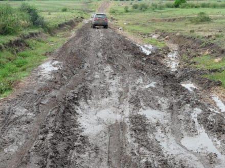 Auch hier mussten wir durch! - Masai Mara Safari