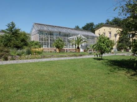 Botanischer Garten Potsdam In Potsdam Holidaycheck