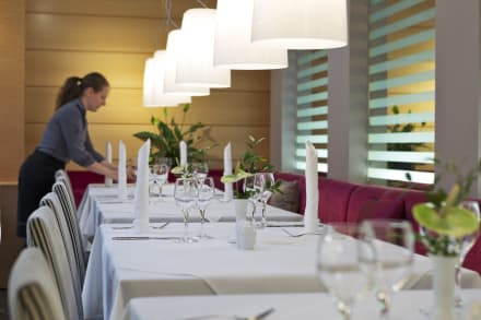 Taste Viennese and international dishes -