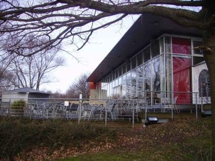 Die Terrasse mit Blick auf den Hohnsensee - Restaurant Noah